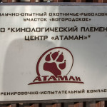 ataman_balashiha_dogs030