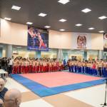kickboxing_balashiha_gold_2015_010