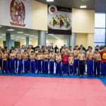 kickboxing_balashiha_gold_2015_017