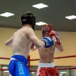 kickboxing_balashiha_gold_2015_026