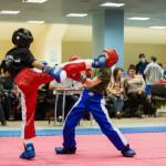 kickboxing_balashiha_gold_2015_027