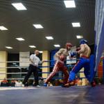 kickboxing_balashiha_gold_2015_031