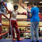 kickboxing_balashiha_gold_2015_033