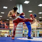kickboxing_balashiha_gold_2015_034