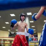 kickboxing_balashiha_gold_2015_040