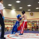 kickboxing_balashiha_gold_2015_041
