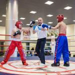 kickboxing_balashiha_gold_2015_042