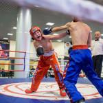 kickboxing_balashiha_gold_2015_044