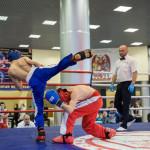 kickboxing_balashiha_gold_2015_045