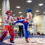 kickboxing_balashiha_gold_2015_054