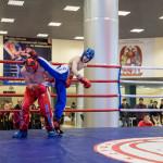 kickboxing_balashiha_gold_2015_055