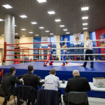 kickboxing_balashiha_gold_2015_062