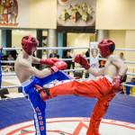 kickboxing_balashiha_gold_2015_064