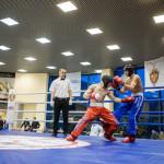 kickboxing_balashiha_gold_2015_066
