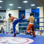 kickboxing_balashiha_gold_2015_067