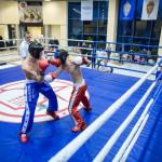 kickboxing_balashiha_gold_2015_068