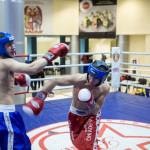 kickboxing_balashiha_gold_2015_069
