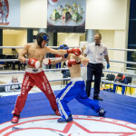 kickboxing_balashiha_gold_2015_071