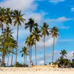 Zanzibar_2018-03-6